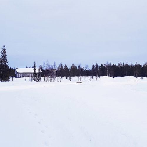 Laponia - kraina śniegu